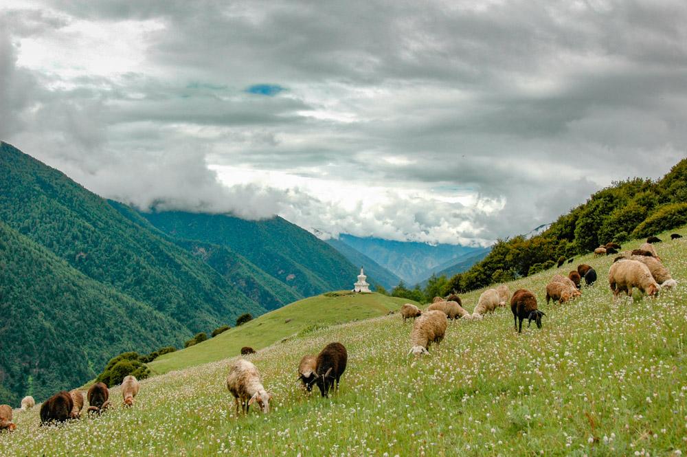 Paysage des montagnes du Sichuan.