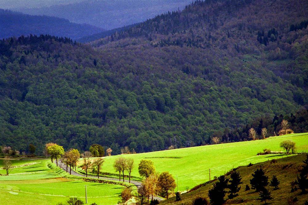 Entre Les Alpiers et Le Bleymard