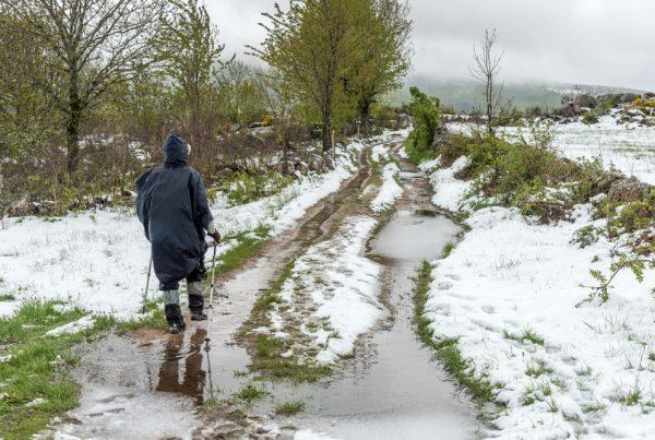 neige et flaques sur le chemin