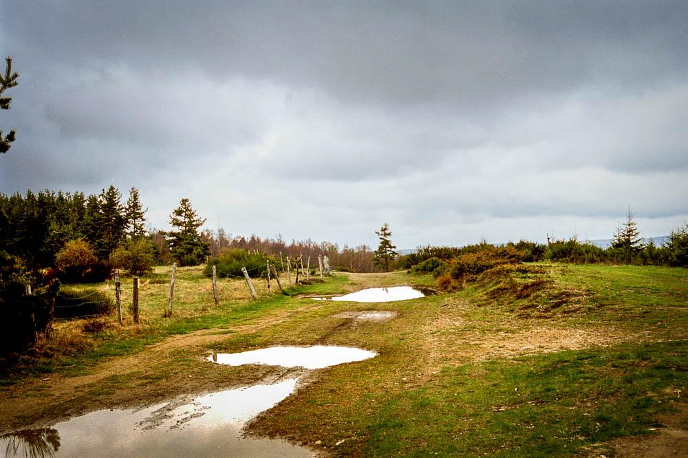 Sur le chemin du Mont Lozère