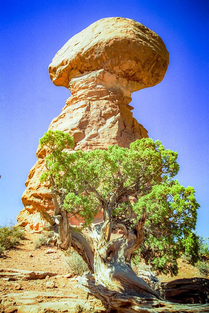 Arches : Balanced Rock