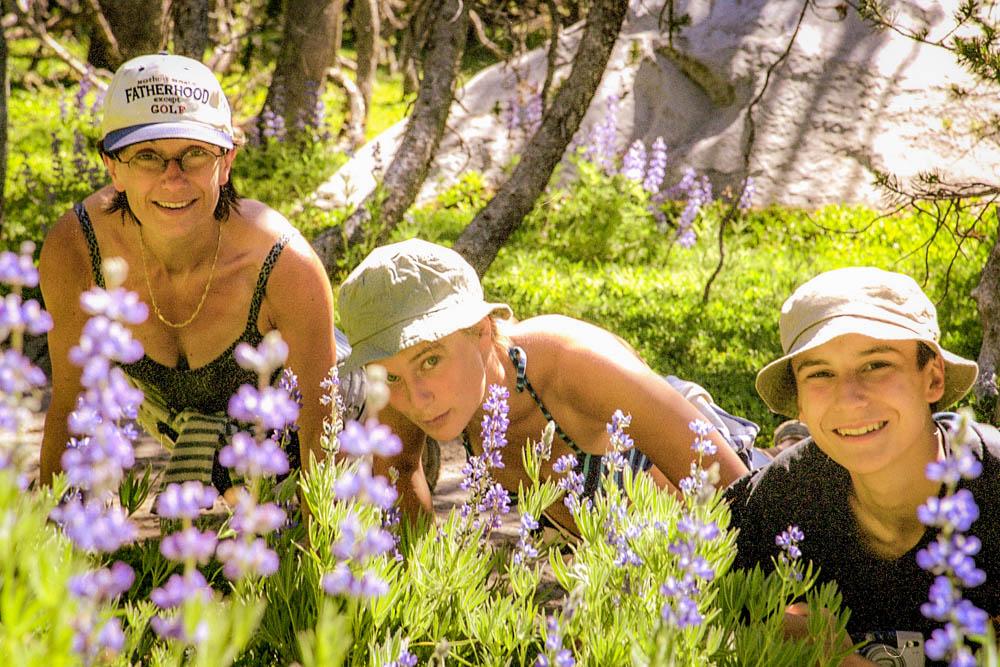 osemite National Park : Tuolumne Meadows