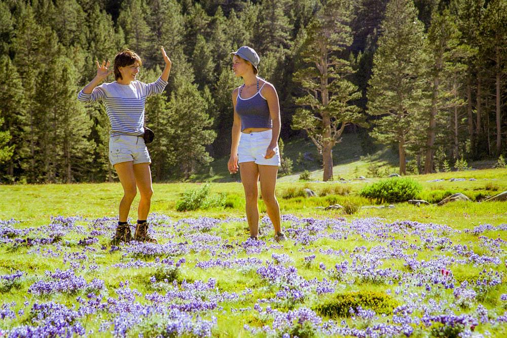 Yosemite National Park : Tioga Pass