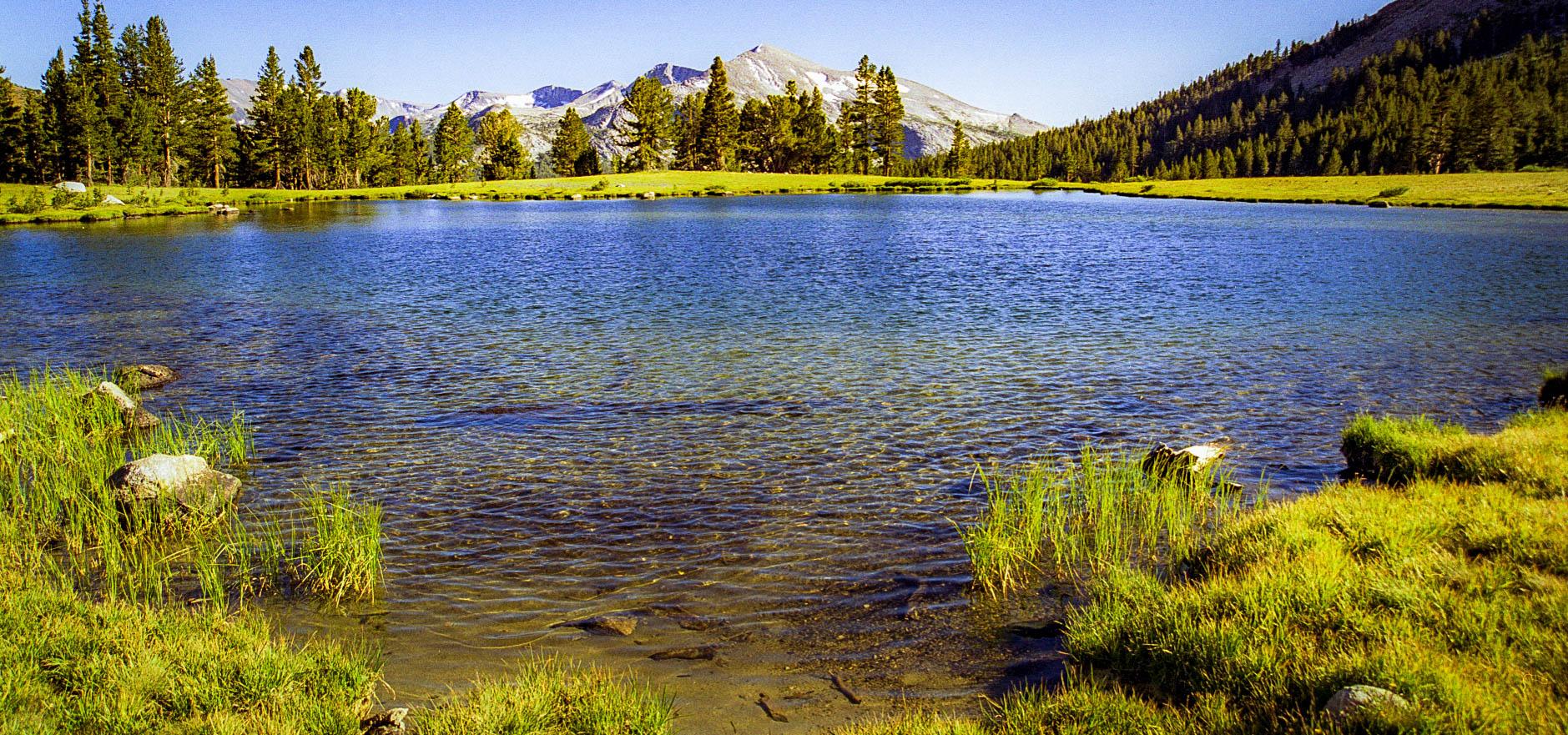Yosemite : Tuolumne Meadows