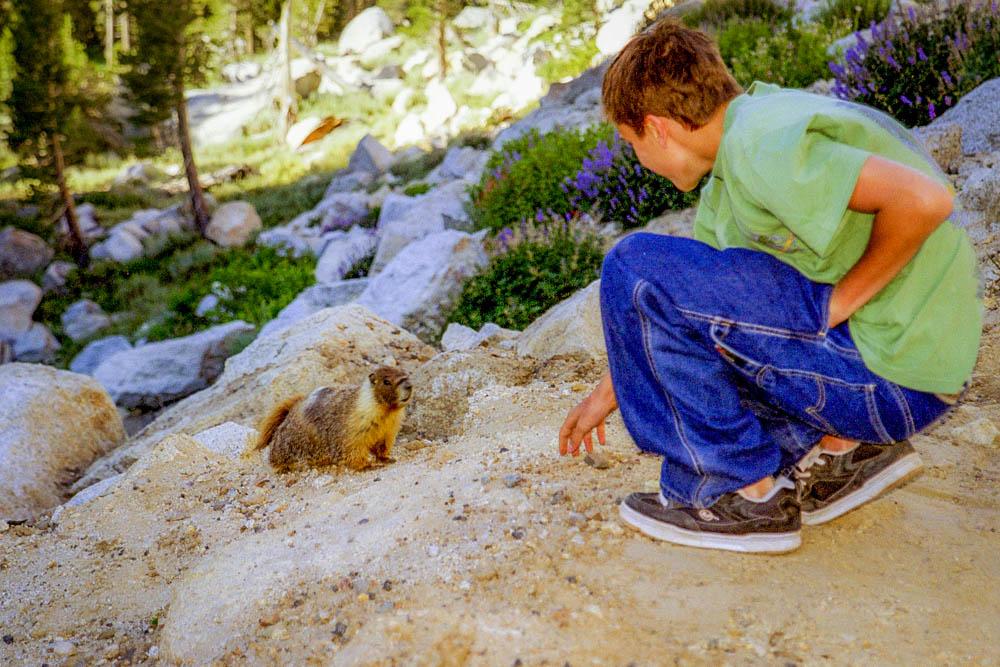 Yosemite National Park : Tioga Road