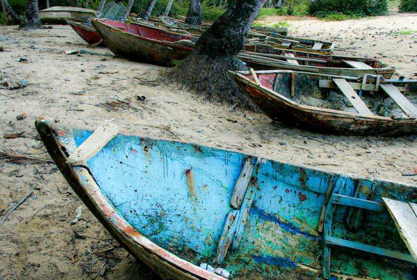 Barques de pêcheurs