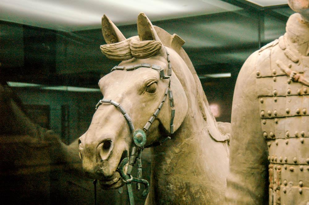 Un cheval et son harnachement de bronze