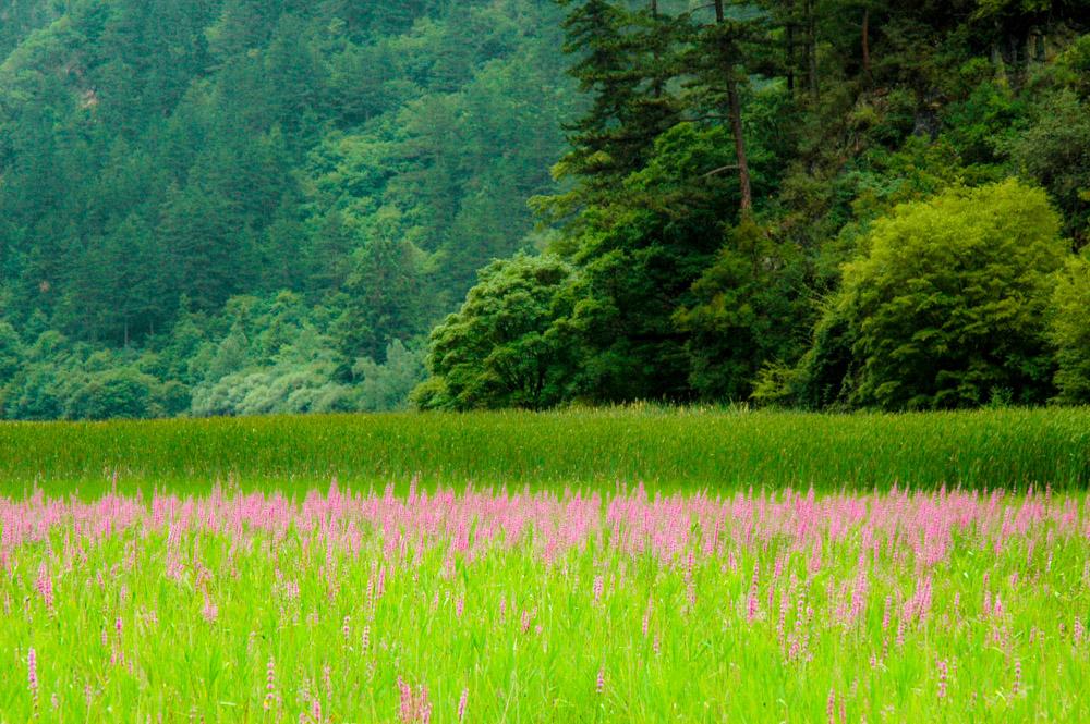 Vallée de Shunzheng