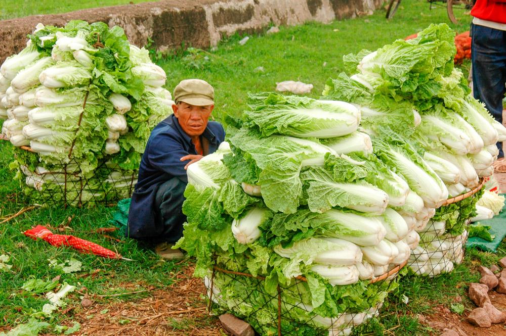 Le marché agricole